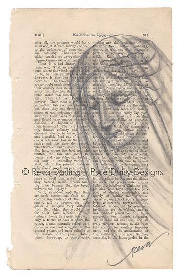 FAITH-006_Grace_The Veiled Virgin