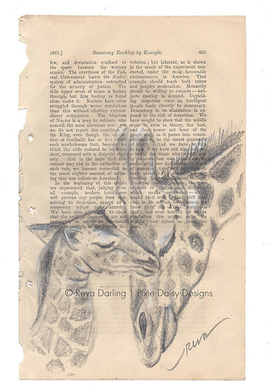 ANI-016_Giraffe mama and baby heads.jpeg