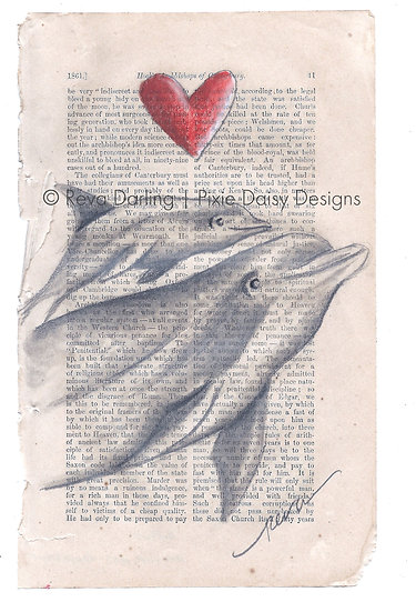 ANI-011_Amour des dauphins_Dolphins
