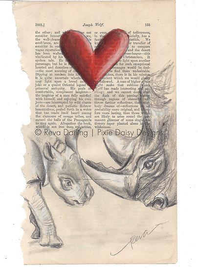 ANI-012_Famille de rhinocéros_Rhinos