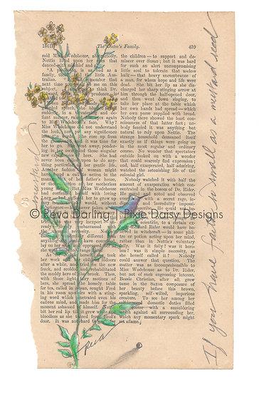 FAITH-011_Faith so small as the mustard seed