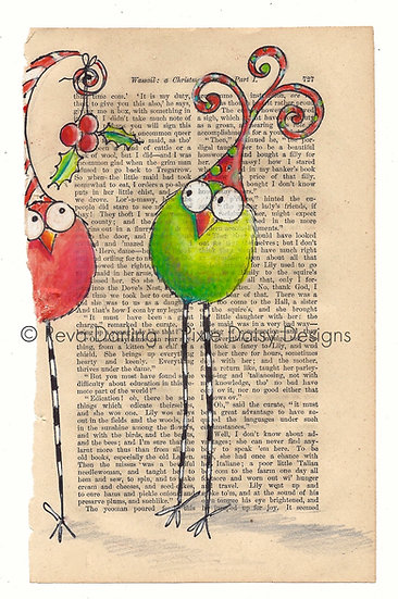 CBRD-014_Two_red_green_mistletoe