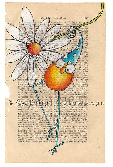 CBRD-003_Orange_blue pdot hat_daisy