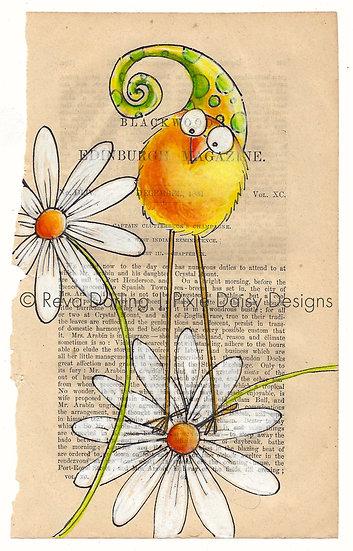 CBRD-013_Yellow_yellow pdot hat_daisy