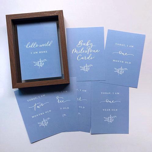 Baby Milestone Diary Cards (Blue)