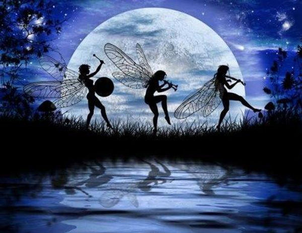 wild fairy ball.jpg