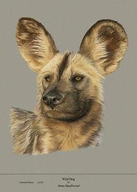 Wild Dog PRINT.jpg