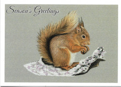 red squirrel card scan