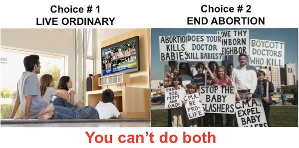Live Ordinary or End Abortion.jpg