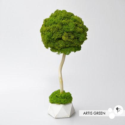 Дерево из мха, топиарий Fresh New 20 cm