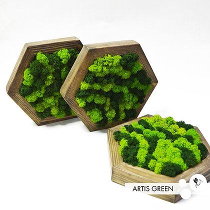 Wooden Hexagon. Настольная композиция
