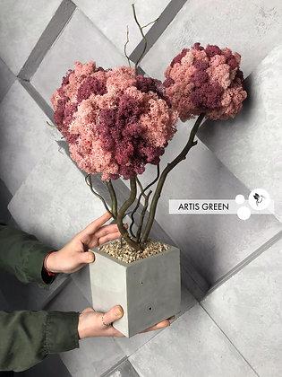 Дерево из розового мха. Топиарий из  мха. Трехствольный бонсай из мха.  T20/2