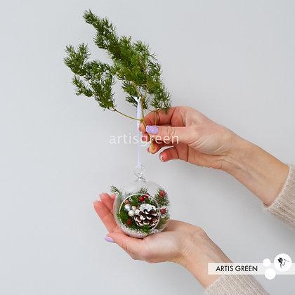 Новогодние ёлочные игрушки с долговечными растениями. Свежесть от 5ти лет!
