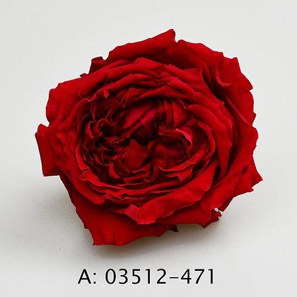 Роза Джульетта (Juliet), А: 471, 6 бутонов