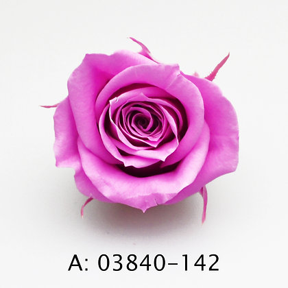 Роза Mini, 9 бутонов, А:142
