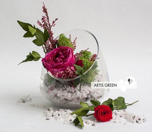 Роза в колбе  «First Spring»