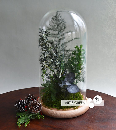 Растения в колбе «Mysterious forest»