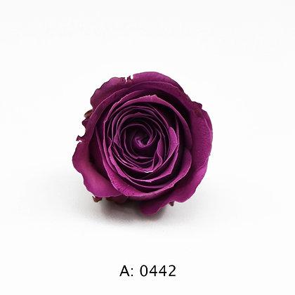 Роза фиолетовая Ø2-3 см мини Plum, А: 0442