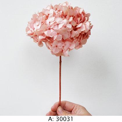 Гортензия розовая со стеблем, А: 30031