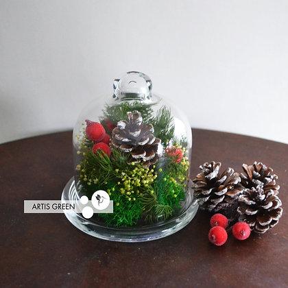 Новогодняя мини-колба со стабилизированными растениями
