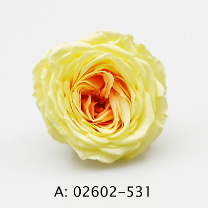 Роза Marihime, 9 бутонов, А: 531