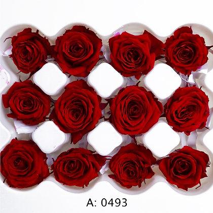 Роза красная Ø2-3 см мини Verona Red, 12 шт/уп. А: 0493