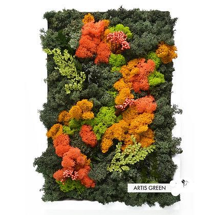 Картина из стабилизированного мха и растений «Orange&Green»