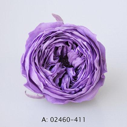 """Роза """"Темри"""", 411, 8 бутонов"""