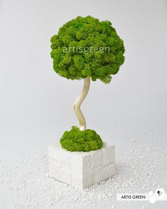 Дерево из мха, топиарий Fresh White