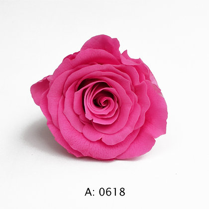 Роза розовая Ø3,5-4,5 см средняя Pink, А: 0618