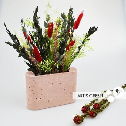Композиция из стабилизированных растений в нежно-розовом бетоне