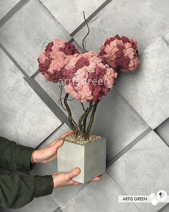 Дерево из розового мха. Топиарий из мха. Трехствольный бонсай из мха