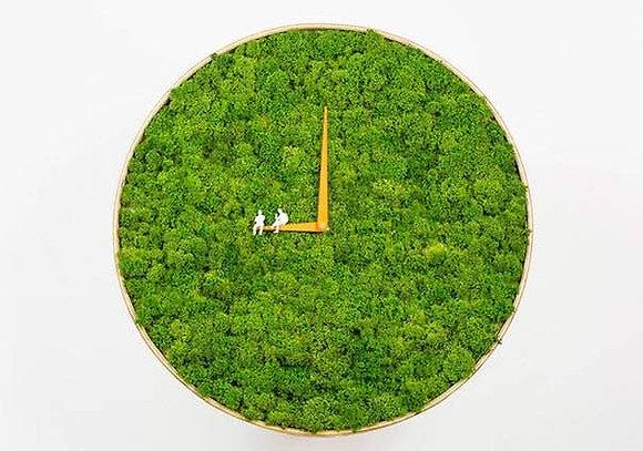 Round moss