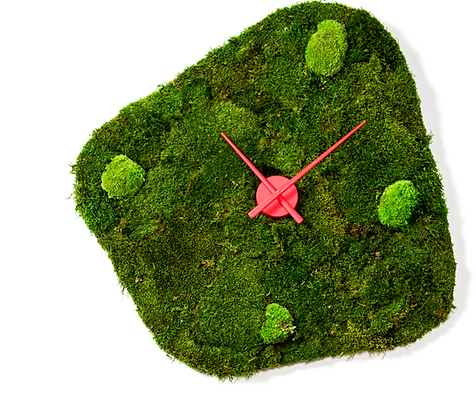 Forest clock