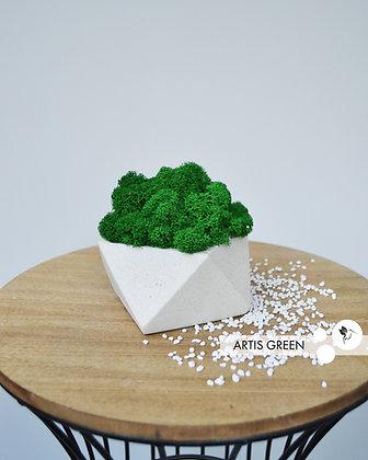 Бетонное кашпо со скандинавским мхом, зелёное