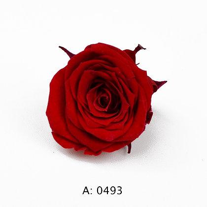 Роза красная Ø2-3 см мини Verona Red, А: 0493