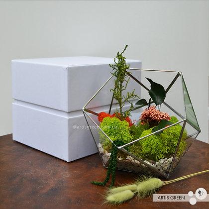 Подарочная коробка для флорариума