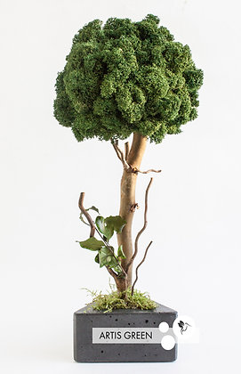 Дерево из мха, топиарий Fresh Dark 30 cm