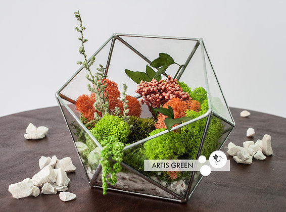 Флорариум со мхом и растениями «Coral reef»