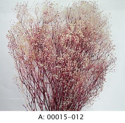 Гипсофила розовая, А: 012