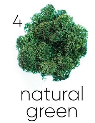 04 NATURAL GREEN, 250 гр