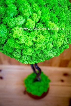Artis Tree 2