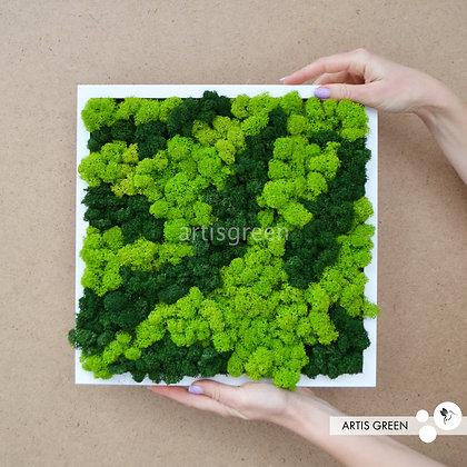 Картина из скандинавского комбинированного зеленого мха