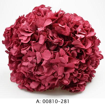 Гортензия розовая со стеблем, А:281