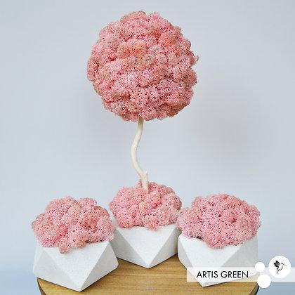 Набор дерево 30 cm+2 бетонных кашпо со мхом, розовый