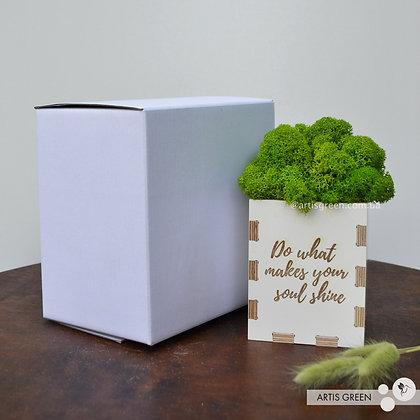 Подарочная коробка для кашпо со мхом