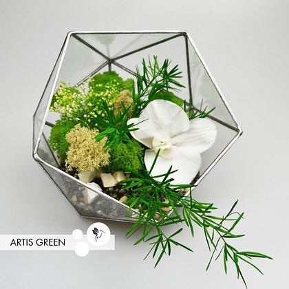 Флорариум со мхом и  белой орхидеей