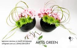 Стабилизированные растения из Японии