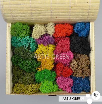 Палитра мха от «Artis Green», 105 гр