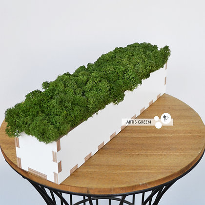 Кашпо со скандинавским мхом, зелёный